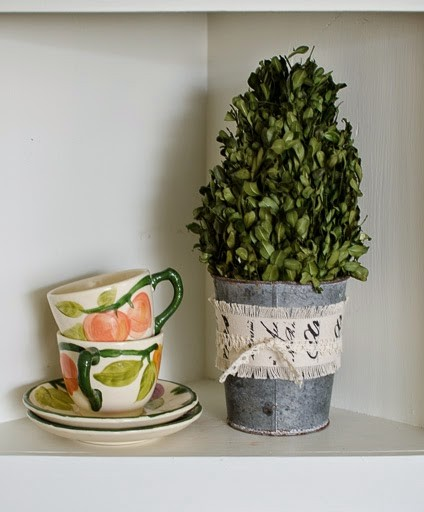 Preserving Boxwood Branches