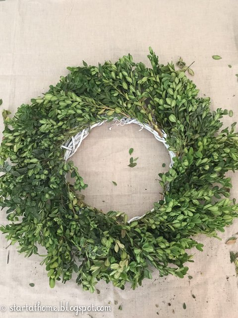 Step by step tutorial on how to preserve and make a boxwood wreath on a budget