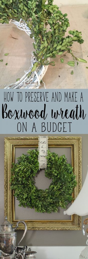 Step by step tutorial on how to preserve and make a real boxwood wreath on a budget