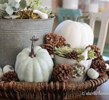 Fall Tablescapes: Succulents and Pumpkins