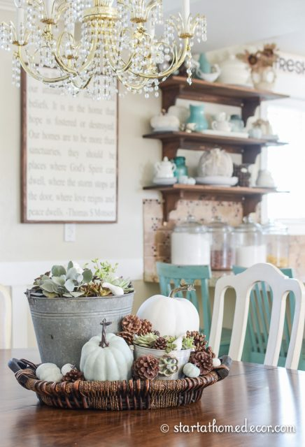 succulents-and-pumpkins