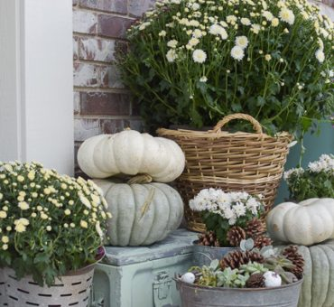 Adding Curb Appeal for Fall on a Budget || Fall Front Porch ||