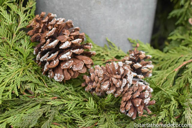 diy-snow-covered-pinecones-2