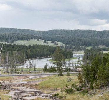 Family Vacation to Yellowstone