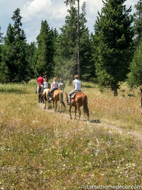 Riding horses in Idaho