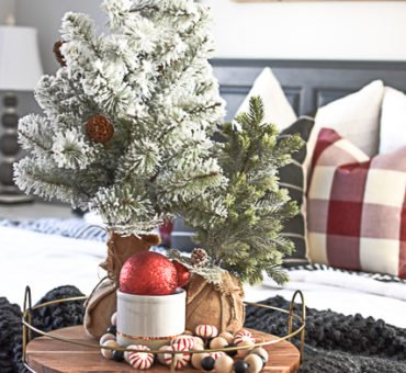 Favorite Christmas Decor Items on Amazon
