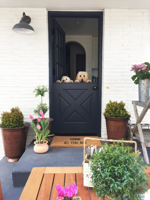 Dutch Doors are so fun!